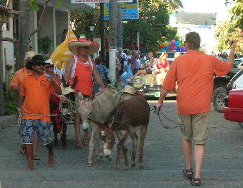 Burros on parade in Barra de Navidad