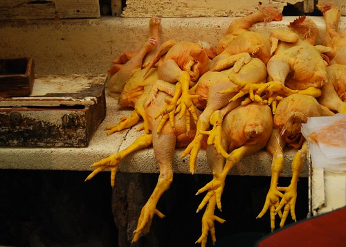Chicken feet are also... BIG