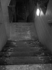 Steps ([ Kane ]) Tags: blackandwhite art steps australia spooky qld kane gledhill kanegledhill humanhabits wwwhumanhabitscomau kanegledhillphotography