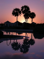 Reflejos en la piscina (manjonastur) Tags: sun tree fabulous soe maspalomas meloneras mywinners abigfave