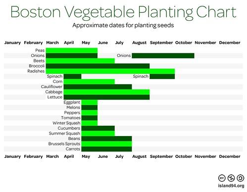Boston Vegetable Planting Chart