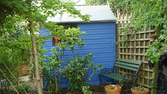 side view of painted shed