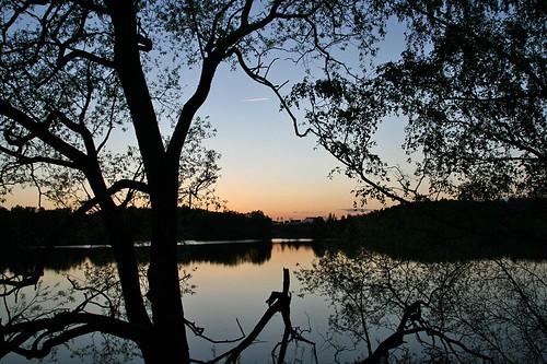 IMG_4347_kvällsträd lillsjön