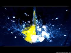 Former Egg - High-Speed Photography (DrGEN) Tags: santa santafe argentina speed diy high lab experimental flash egg explosion experiment rosario alta fe velocidad tutorial huevo laboratorio ceres hogar yema photogrphy cascara wpblog theloveshack anawesomeshot theunforgettablepictures drgen goldstaraward