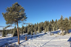 Winter holiday in Valdres, Norway (JRJ.) Tags: norge norway winter snow holidays mountain su