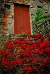 red door (alternativefocus) Tags: pentax steps reddoor stairway lookingup pentaxk10d alternativefocus