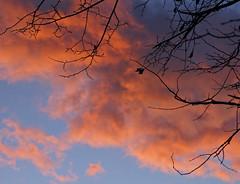 Solnedgang 2 (randihausken) Tags: sunset solnedgang theperfectphotographer