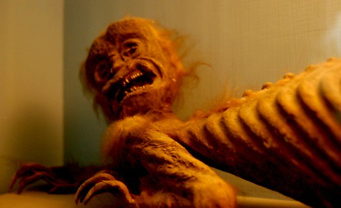 Fiji Mermaid, in the Folklore section, detail