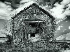 Old School (Sorento Road) (mereshadow) Tags: old school bw illinois oneroomschoolhouse bondcounty redballtrail