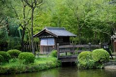 Japanese scene (lindsayspix) Tags: people japan nikon odaiba d3 082407 08242007