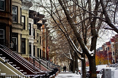 (nrvlowdown) Tags: street nyc newyorkcity trees winter snow newyork brooklyn sidewalk housing bklyn gothamist prospectheights brownstones townhouses nrv:credit=rachelshields nrvlowdown