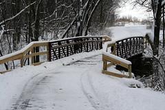 Blackhawk Springs FP Bridge (Birdfreak.com) Tags: bridge winter rockfordillinois winnebagocounty thebiggestgroup absolutelystunningscapes backhawkspringsforestpreserve birdfreaknpa