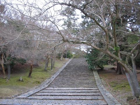 東大寺「猫段」