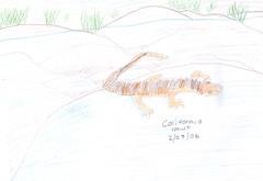 CA newt journal entry