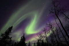 Aurora (Wolfhorn) Tags: winter cold nature alaska auroraborealis naturesfinest the4elements colorphotoaward superbmasterpiece fiveflickrfavs ostrellina