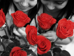 (Jadore Allure) Tags: flowers red roses bw cute girl little tammy lil allure jadore smelling fdeetha aplusphoto 3ajeeeb colorwow