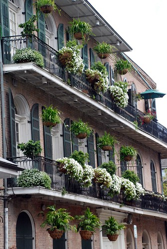 Verandas in New Orleans