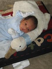 baby Jovin Patel