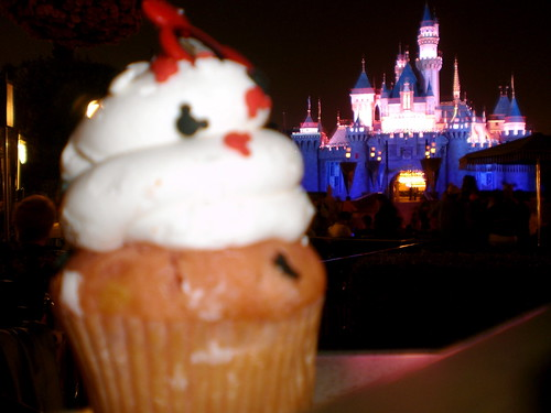 Sleeping Beauty's Castle and a Cupcake! (Two of my favorite things on earth!)
