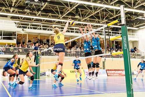 "3. Heimspiel vs. Volleyball-Team Hamburg • <a style=""font-size:0.8em;"" href=""http://www.flickr.com/photos/88608964@N07/32436887190/"" target=""_blank"">View on Flickr</a>"