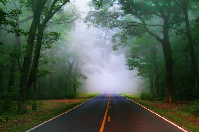 The Fog Ahead