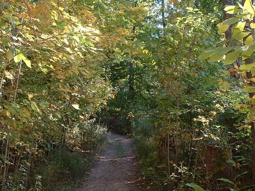 Dawes Arboretum