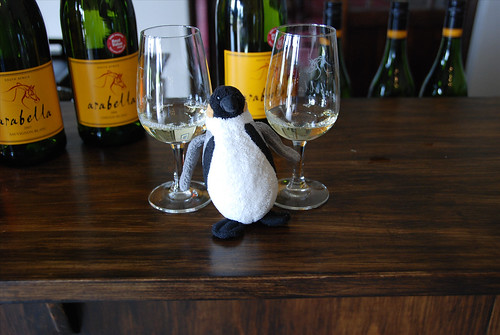 Mini Wolfgang visits the Arabella Wine Estate!