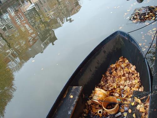 Folhas amareladas no outono holandês