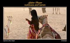 HURGHADA JEEP SAFARI (Albert ☺ bognerart.eu) Tags: sahara geotagged photo foto sonnenuntergang desert albert dune egypt hijab camel desierto egipto duna ägypten egitto bah hurghada düne kamel wüste deserto bedouin désert Ägypten beduini cammello hamada egy beduino égypte tele1 mısır jeepsafari bogner beduíno iso80 sanddüne çöl hammada beduinen pustinja camélido bédouins egipat camélidé sandwüste albertbogner bognerart ev12 artmemberssalzburg colors200000 bognerartprizesmedalsandawards steinwüste alghardaqah felswüste fotoexcelente albahralahmar gouvernementrotesmeer muhafazatalbahralahmar alghurdaqah algurdaqa ilgardaga ilgurdaga geo2734 redseagovernorate Αίγυπτος mannaitours geo270337 geo27043366 geo27038413365542 desertodosaara Βεδουίνοι rgb180150130