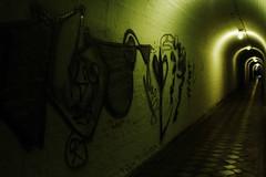 Grafite no Tnel (fabio teixeira) Tags: brazil brasil industrial fabio vila tunel campinas estao teixeira nufca fabioteixeira