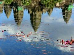 reflection in Angkor Wat (Z Eduardo...) Tags: reflection water colors asia lotus lac angkorvat platinumphoto superhearts photofaceoffwinner