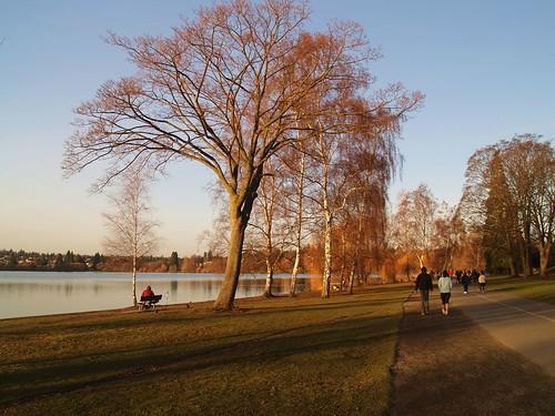 Green Lake 旁的人行步道 (2)