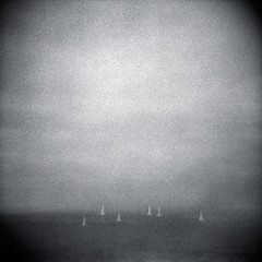 (gwendoly) Tags: bw monterey holga toycamera sailboats 3200 multipleexposures