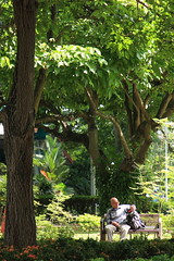 parklife (園)