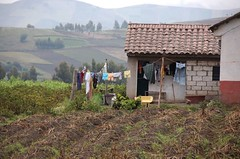 Andean farm