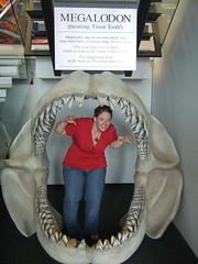 Jaws! (Tkuta) Tags: newzealand hawkesbay