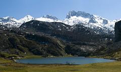 Lago Ercina (jtsoft) Tags: mountains landscape asturias olympus ercina picosdeeuropa e510 peasanta zd50200mm torresantamara jtsoftorg