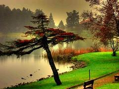my soul (NURAY YUZBASI) Tags: red lake green beautiful