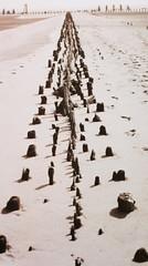 (ougenweiden) Tags: sea mer beach strand germany island deutschland sand mud north pole insel ostfriesland poles nordsee watt mudflat ebbe wangerooge norddeutschland niedersachsen pfhle inseln pfahl ostfriesische friesisch friesische sandsrand sandlandschaft