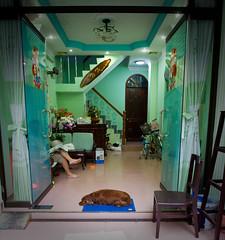 Guest House (Mark Broadhead) Tags: sleeping dog glass bike stairs reading hotel newspaper chair aqua entrance vietnam mat doorway reception saigon hochiminhcity guesthouse district1 thelittledoglaughed