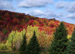 Cloud Shadows (vtpeacenik) Tags: autumn landscape october vermont naturesfinest karmapotd karmapotw anawesomeshot