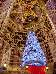 @ the Gaylord Texan Resort (ladybugbkt) Tags: christmas red holiday tree geotagged gold star texas decoration gaylordtexan kodakz712is top20everlasting top20texas bestoftexas
