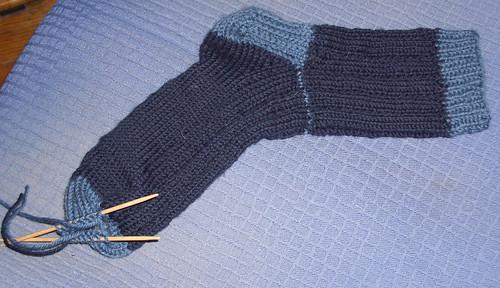 thuja-sock.jpg