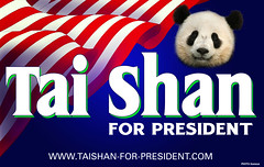 Tai Shan For President (kteneyck) Tags: blue red party white green giant zoo dc washington panda head stripes flag president political politics presidential tai national american shan waving placard taishan subadult zoological somesai kteneyck