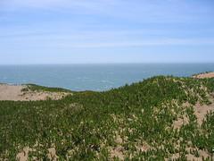 IMG_0639 (aloveletteraway ) Tags: beach fortfunston