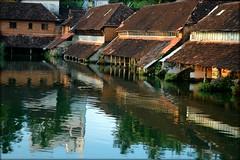 Kulam (inderSTADT) Tags: india reflection reflections pond kerala thrissur trichur kulam mgroad balagopalan inderstadt dravidam dravidum draveyedum vedicschool
