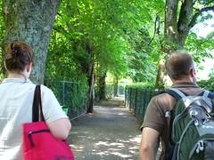 beautiful pathways (emilyooo) Tags: wolfgangsee stgilgen