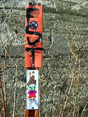 SDC Evolve (The Joy Of The Mundane) Tags: streetart art graffiti sticker stickerart stickers evolve stickertag fst sdc slaptag