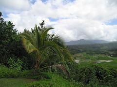 STA_3948.JPG (hklo) Tags: kauai hanaleibay iphotorating0