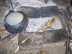 Huaynacotas cuy